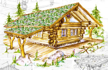 ihr holzhaus blockhaus oder naturstammhaus mehrer blockhaus. Black Bedroom Furniture Sets. Home Design Ideas